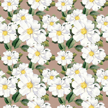 aquarel: Foral pattern with white flowers magnolia. Watercolor