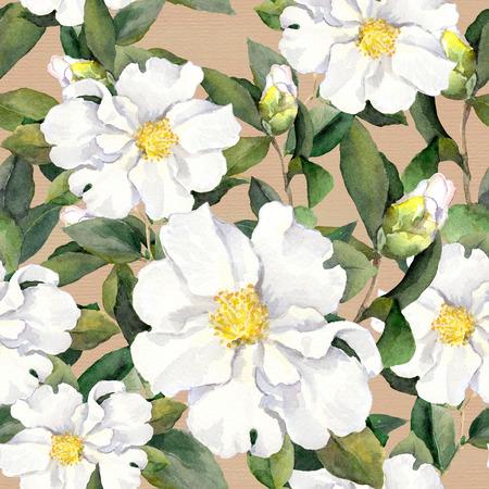 Foral patroon met witte bloemen magnolia. Waterverf Stockfoto - 51404715