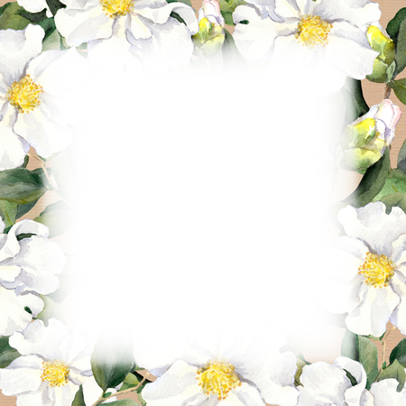 aquarel: Seamless floral wallpaper with white flowers magnolia, peonies. Watercolour