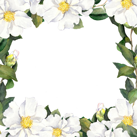 aquarel: Watercolor floral frame with white flowers fringe on paper texture Stock Photo