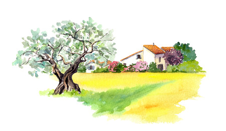 france painted: Rural provencal house and yellow field -wheat, sunflower- in Provence, France. Watercolor