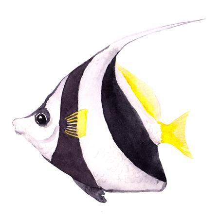 bannerfish: Exotic fish - tropical bannerfish. Watercolor sea animal Stock Photo