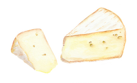 cuted: Two cheese brie slices. Water color isolated
