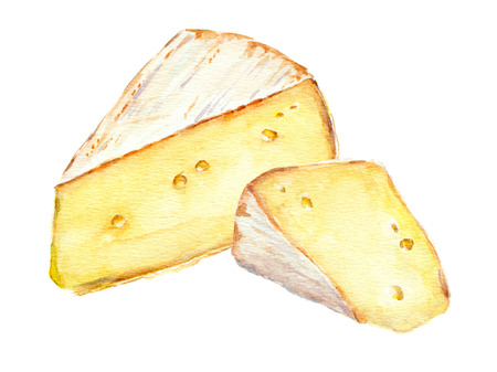 Twee Franse kaas plakjes. geïsoleerd Aquarel Stockfoto - 59023382