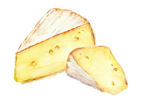 Zwei französisch Käsescheiben. Wasserfarbe isoliert Standard-Bild - 59023382