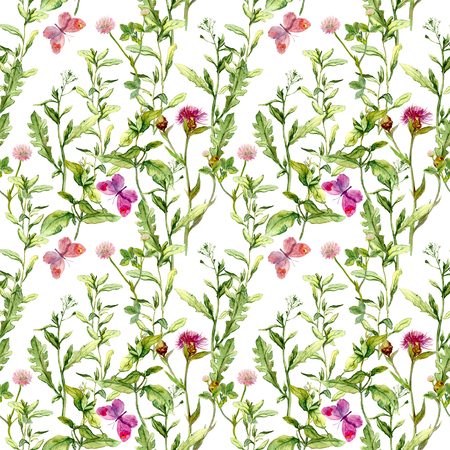 wild meadow: Border frame with wild herbs, meadow flowers and butterflies. Watercolor