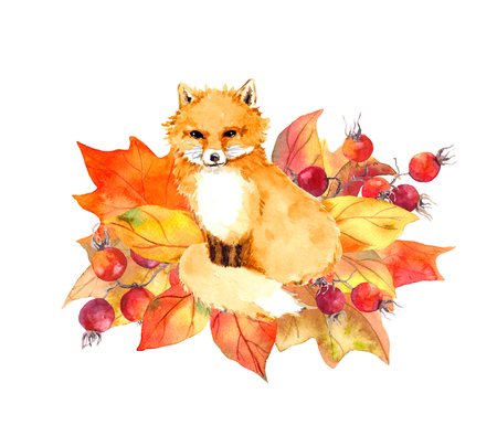 lable: Cute fox in autumn leaves and berries. Watercolor lable