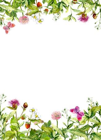 Lente bloemen, weidegras, vlinders. Vintage floral grens, kruiden-kaart of blanco. Waterverf Stockfoto
