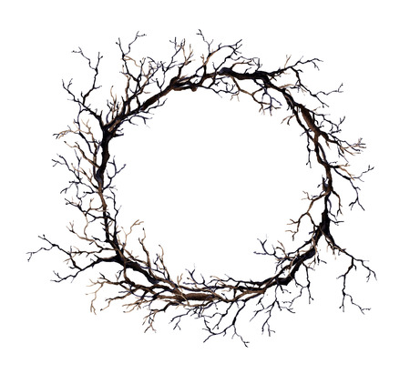 Wreath with spooky branches - no leaves. Watercolor border