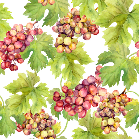 aquarel: Seamless pattern with grape, vine and leaves on white background. Watercolour art