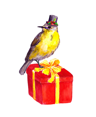 plug hat: Cute bird in top hat with christmas mistletoe on red present box. Watercolor