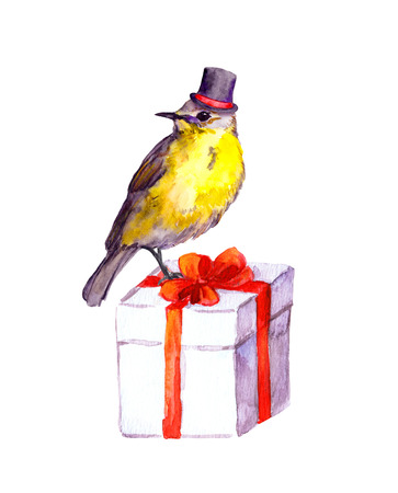 Cute bird in tall hat on present box. Water color