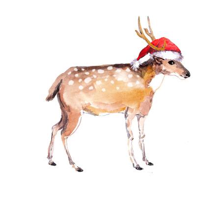 Cute new year deer in red santas hat. Watercolor christmas animal