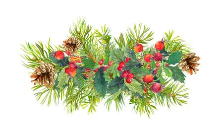 Winter flowers, fir tree, christmas mistletoe Watercolor composition