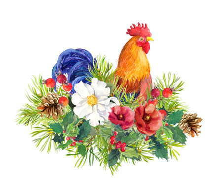 Rooster bird cock with winter flowers, christmas tree, mistletoe. Watercolor for greeting card, label, new year design