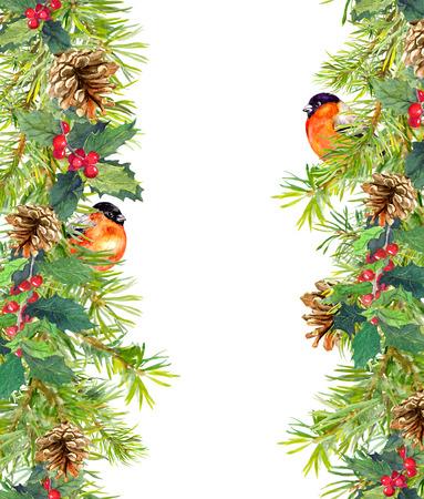 finch: Fir tree, mistletoe, red finch bird. Christmas seamless border. Watercolor card Stock Photo