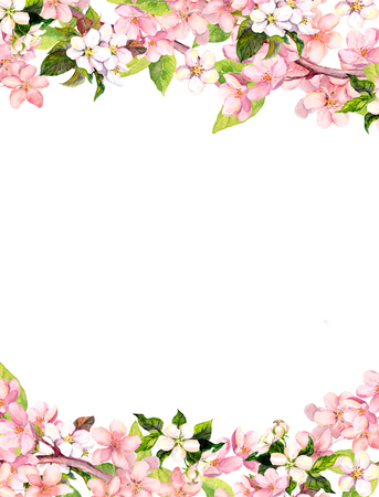Blossom of pink sakura flowers. Floral card or blank. Watercolor