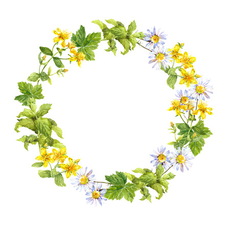Floral wreath. Herbs and meadow flowers. Watercolor round border Banque d'images