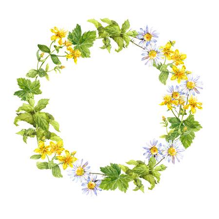 Couronne florale Herbes et fleurs de prairie. Bordure ronde aquarelle