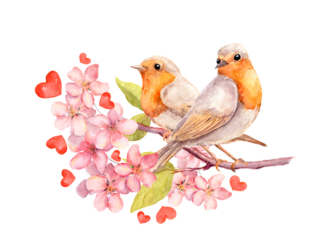 birds on branch: Birds on blooming branch with flowers. Watercolor Stock Photo