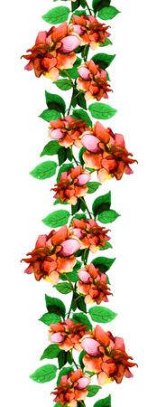 Bloemen naadloze lint grens met kleurrijke roos bloem