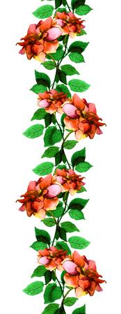 Bloemen naadloze strip grens met lichte rozen bloemen