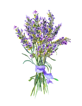 Lavender flowers bunch. Watercolor Stock Photo