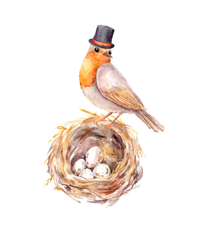 Fathers day illustration. Vintage bird in tall hat at nest with eggs. Watercolor