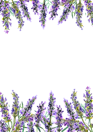 Lavender flowers. Watercolor border