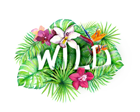 Tropical leaves, exotic flowers, text Wild. Watercolor