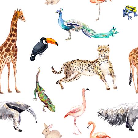 Wild animals and birds - zoo, wildlife - giraffe, cheetah, toucan, flamingo, other. Seamless pattern. Watercolor