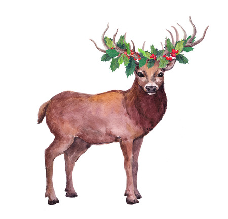 Christmas deer animal with mistletoe. Watercolor illustration