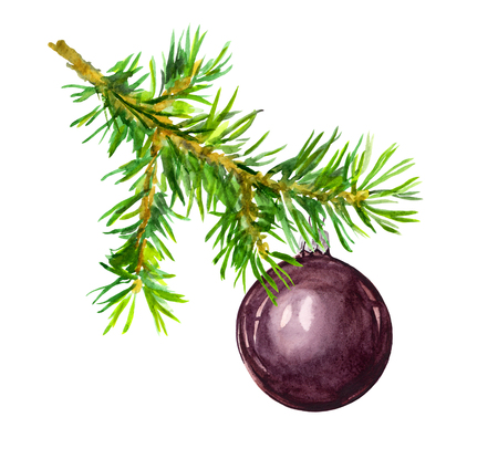 Pine branch with black Christmas bauble ball. Watercolor