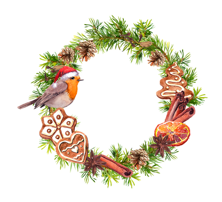 Robin bird in red holiday hat, ginger cookies, cinamon, orange. Christmas wreath with fir tree branches, cones. New year watercolor