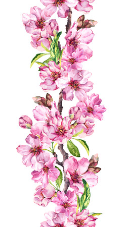 Apple, cherry pink flowers. Seamless floral stripe frame. Botanical watercolour painted border Stock Photo