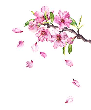 Flowering cherry tree. Pink apple flowers, sakura, almond flowers on blooming branch. Watercolor Stock Photo