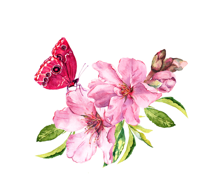 Butterfly, pink flowers, spring blossom. Flowering branch of apple, cherry tree. Watercolor floral twig