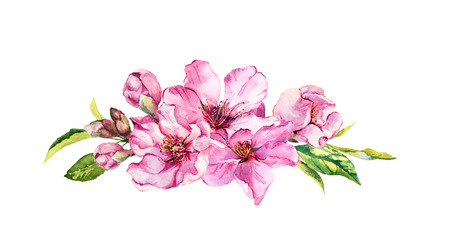 Pink apple flowers, sakura, almond flowers. Watercolor Stock Photo