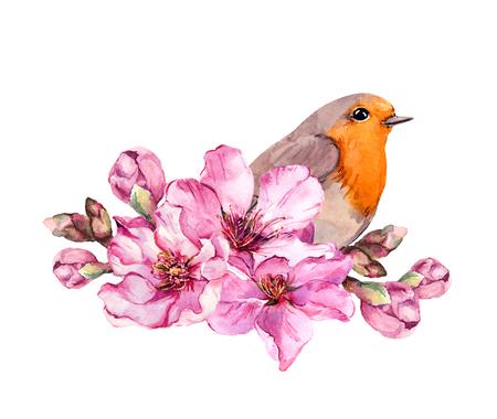 Spring bird on flowering branch with pink flowers of cherry, sakura, apple, almond flowers . Watercolor