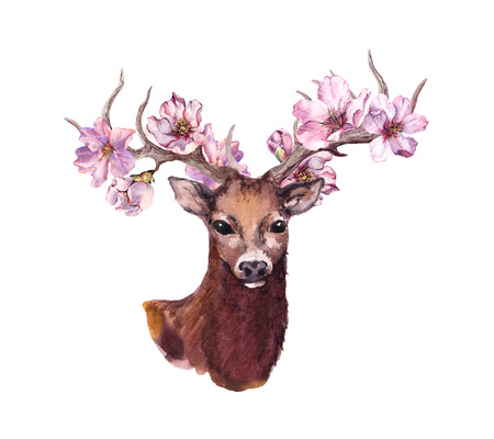 Deer animal head with pink spring cherry blossom flowers in horns. Watercolor