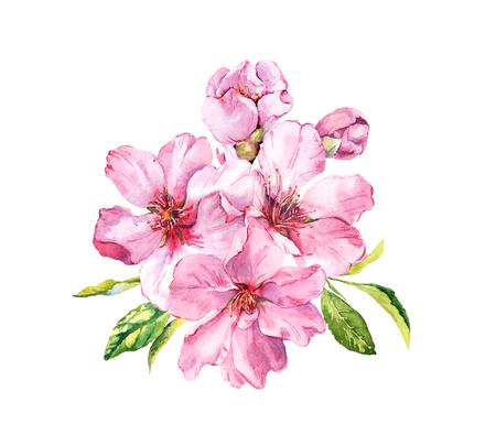 Pink spring flowers. Cherry blossom, almond, apple, sakura. Watercolor Banco de Imagens