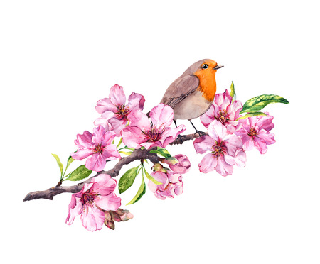 Bird in spring flowers. Springtime blossom, cherry, apple, sakura branch. Watercolor