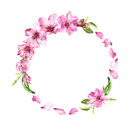 Cherry blossom, spring flowers sakura . Floral wreath with petals. Watercolor circle frame