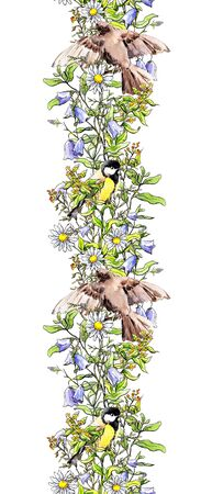 Birds - sparrow, tit in grass and flowers. Seamless border frame. Watercolor banner sketch style Stockfoto