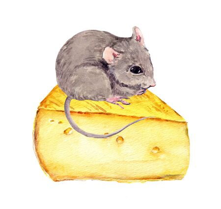 Adorable mouse with piece of cheese. Watercolor hand painted drawing