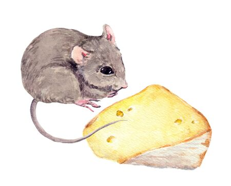 Adorable mouse and piece of cheese. Watercolor hand painted drawing Stock Photo