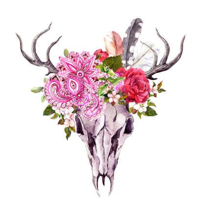 Deer animal skull - flowers, feathers, tribal ornament. Watercolor