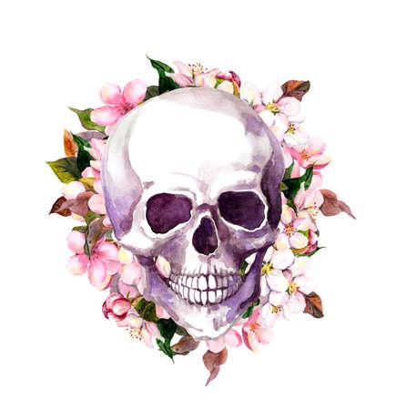 Human skull in cherry blossom, flowers of sakura. Watercolor vintage