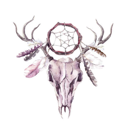 Deer animal skull with dream catcher, feathers. Watercolor Фото со стока