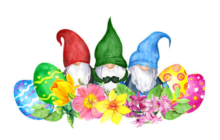 Easter gnomes with decorated colored eggs, spring flowers narcissus, hyacinth . Watercolor for springtime holiday